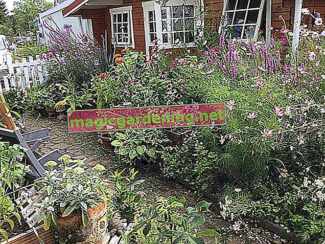 Переодягнути садовий будинок - це можливо?