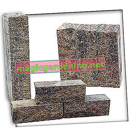 Kieskönig Palisade Concrete Brick molding stone Edging stones made of precious chippings colored through 22 x 8 x 7.5 cm Autumn gold 200 pieces