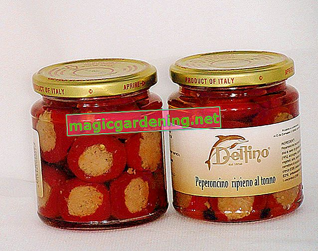 Preserve hot peppers in a glass
