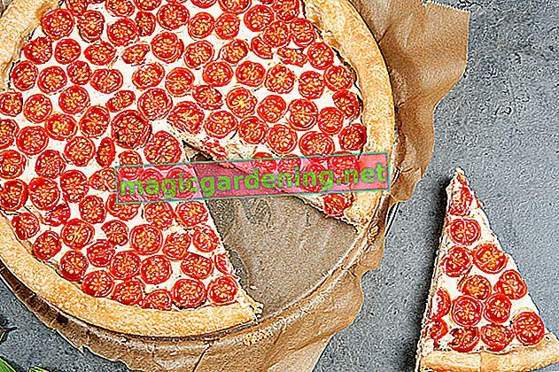 I pomodori affetti da marciume bruno sono commestibili?