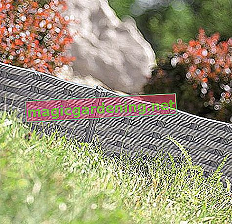 Lawn edging Garden palisade Bed border Beet border 3.9m rattan look 3 colors by rg-vertrieb (gray)