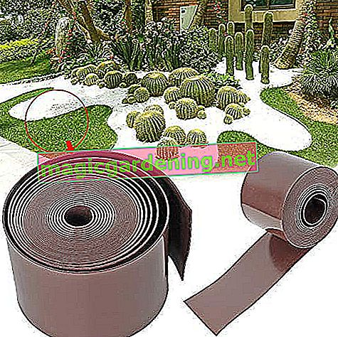 Forever Speed ​​Lawn Edging PE 2mm Roll Smooth Plastic Bed Edging Lawn Edging Bed Edging 10m x 15cm (LxH) Brown