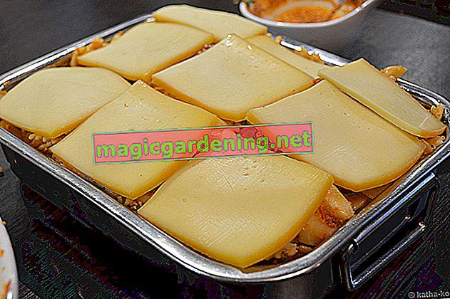 Congeler les restes: fromage à raclette