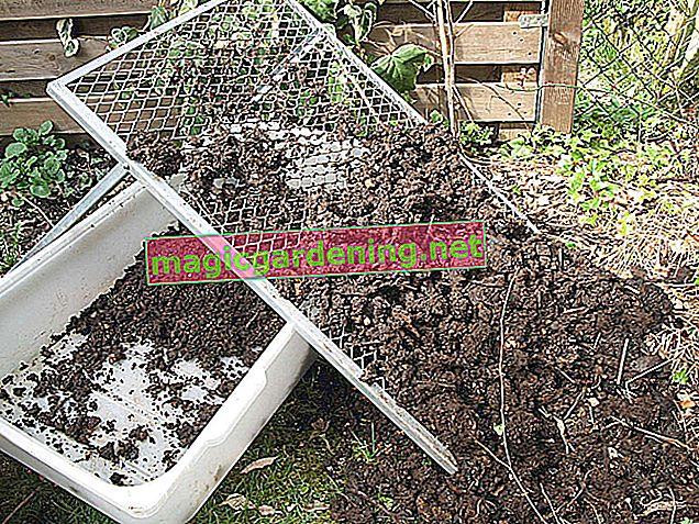 Nemojte samo stavljati isječke travnjaka na vrh komposta