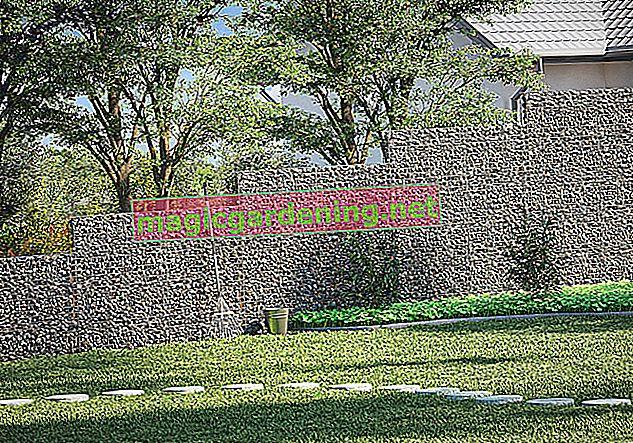 Izgradite kameni zaslon za privatnost u vrtu