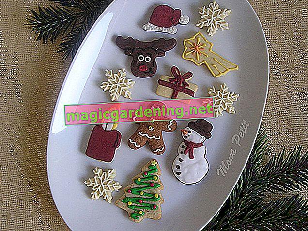 Smrznuti grašak od šećera za hrskavo uživanje tijekom cijele godine