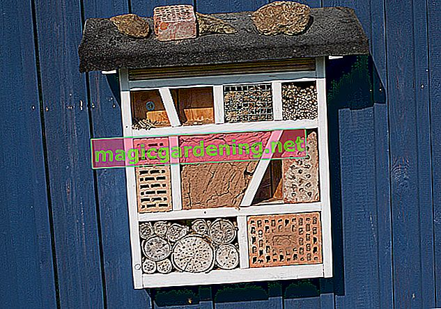 Build an insect hotel out of pallets