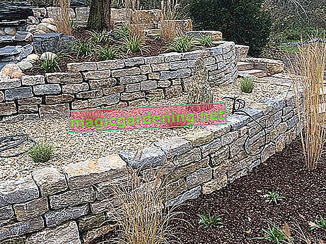 Natural stone transforms the garden into an oasis of wellbeing - this is how it works