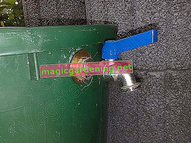 Seal the tap of a rain barrel