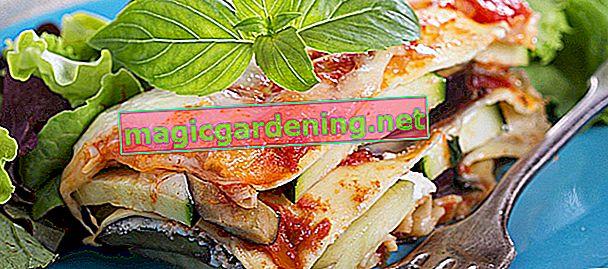 Zucchine essiccate - come preparare patatine di zucchine vegetariane