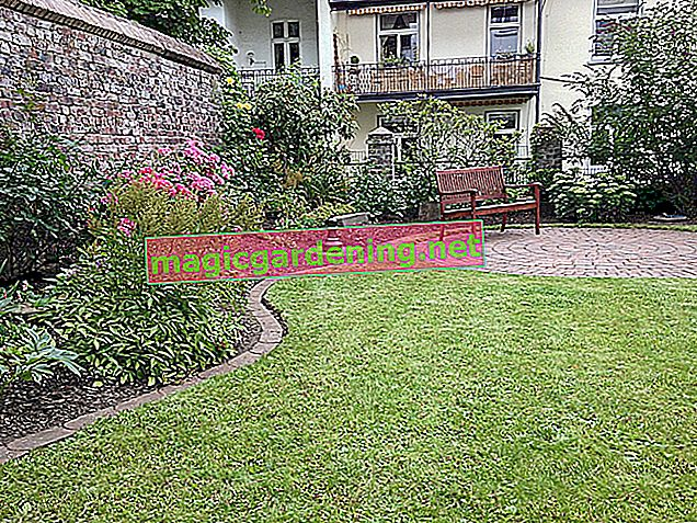 Place lawn edging stones to border the lawn or beds
