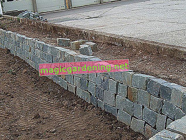Kendiniz bir bahçe duvarı inşa edin - Bir tuğla duvar inşa etmek için talimatlar