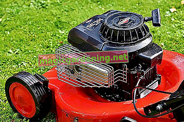 Adjust the carburetor on the lawnmower - this is how it works