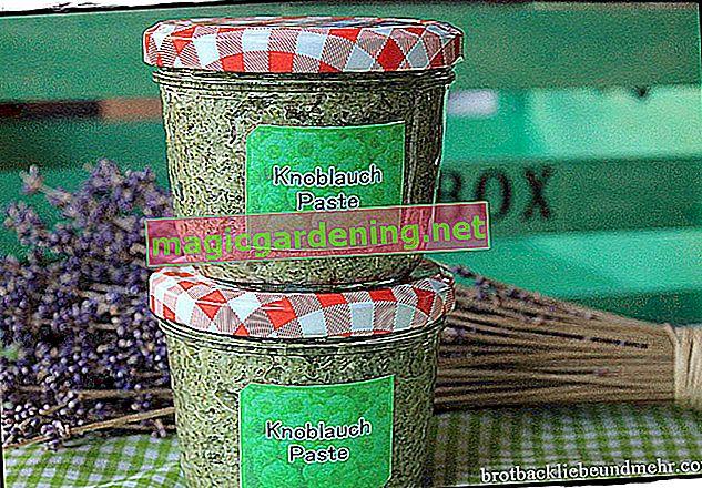 Freeze garlic in reserve