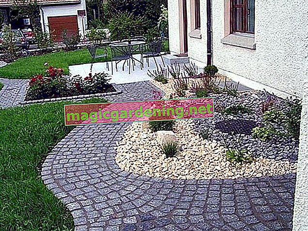 Taş ve çakıl ile bahçe tasarımı - fikirler ve ipuçları