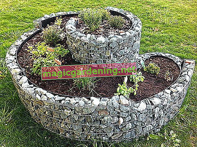 Build the herb snail yourself - DIY building instructions for the garden